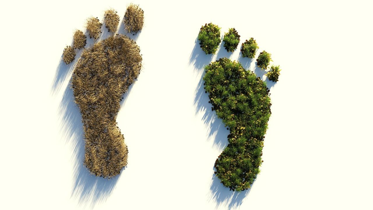Hoe gaat MGT Personeelsreizen samen met u onze ecologische voetafdruk zo klein mogelijk maken?